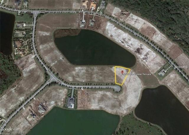 20927 Parkstone Terrace, Bradenton, FL 34202 (MLS #A4205764) :: Medway Realty