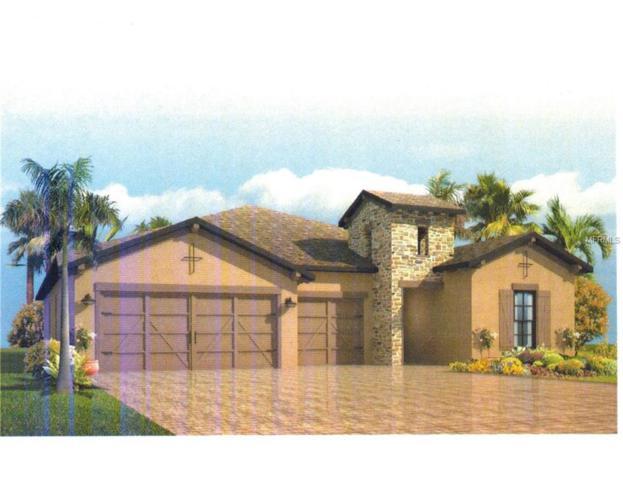 4842 Diamonds Palm Loop, Wesley Chapel, FL 33543 (MLS #A4207064) :: Griffin Group
