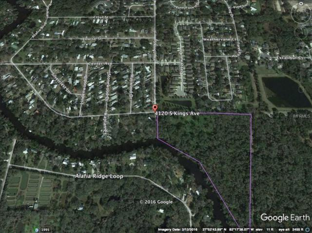 4120 S Kings Avenue, Brandon, FL 33511 (MLS #A4207187) :: Griffin Group