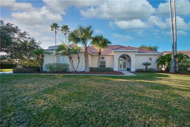 3409 Wilderness Boulevard W, Parrish, FL 34219 (MLS #A4207190) :: Team Pepka