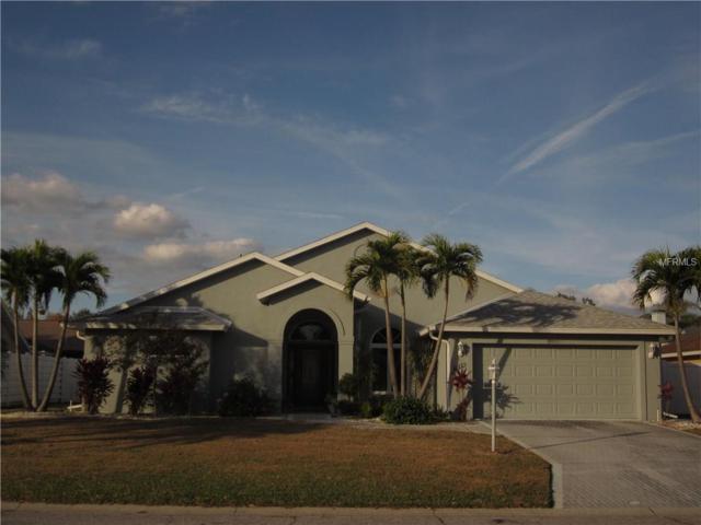 6113 55TH Terrace E, Bradenton, FL 34203 (MLS #A4207206) :: Medway Realty