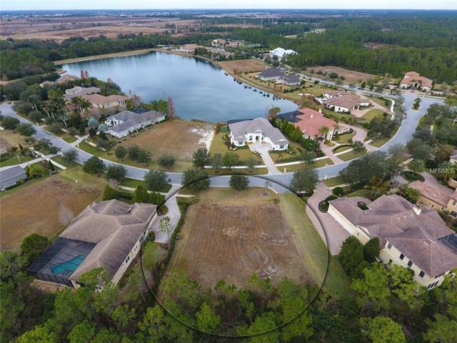 8313 Farington Court, Bradenton, FL 34202 (MLS #A4207364) :: Godwin Realty Group