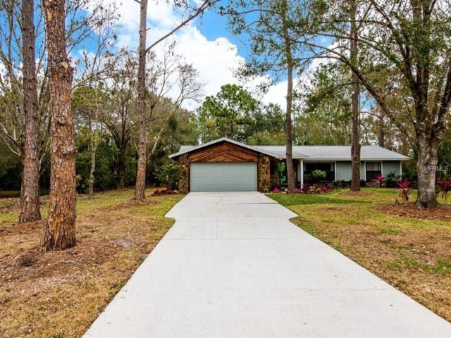 5904 93RD STREET Circle E, Bradenton, FL 34202 (MLS #A4207791) :: Zarghami Group