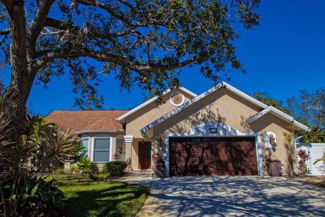 8528 10TH Avenue NW, Bradenton, FL 34209 (MLS #A4207910) :: McConnell and Associates