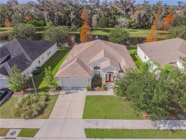 3405 61ST Terrace E, Ellenton, FL 34222 (MLS #A4209747) :: Medway Realty