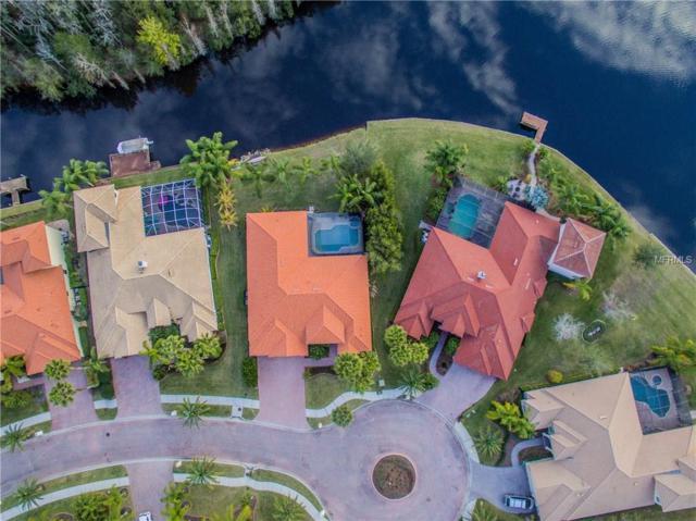 10866 Barbados Isle Drive, Tampa, FL 33647 (MLS #A4209839) :: Team Bohannon Keller Williams, Tampa Properties
