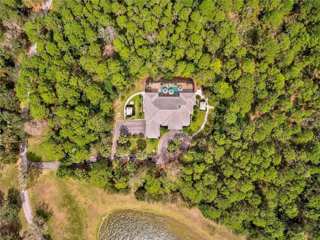 560 N River Road, Venice, FL 34293 (MLS #A4210556) :: Medway Realty