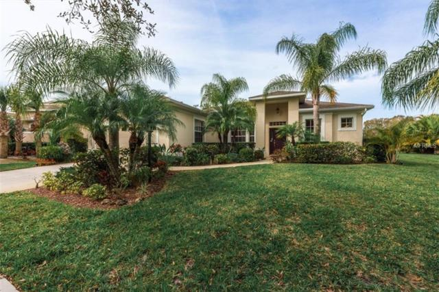 10913 Bluestem Circle, Lakewood Ranch, FL 34202 (MLS #A4210642) :: Medway Realty