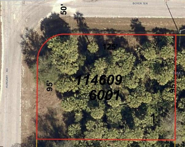 Hungary Road, North Port, FL 34288 (MLS #A4210801) :: Medway Realty