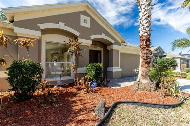 4451 Beaumaris Drive, Land O Lakes, FL 34638 (MLS #A4210997) :: Griffin Group