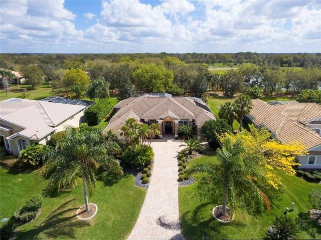 2382 Little Country Road, Parrish, FL 34219 (MLS #A4211381) :: The Fowkes Group