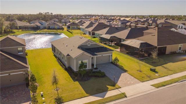 5204 Bentgrass Way, Bradenton, FL 34211 (MLS #A4211670) :: TeamWorks WorldWide