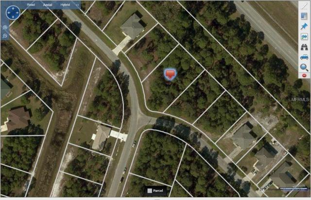 Douglas Road, North Port, FL 34288 (MLS #A4211856) :: Griffin Group