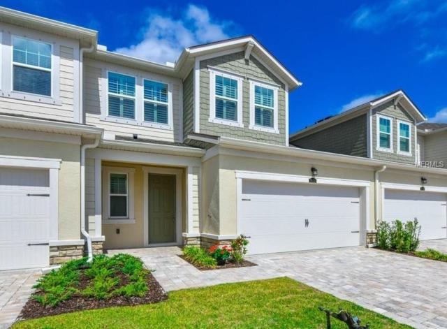 3608 Pitch Lane, Sarasota, FL 34232 (MLS #A4212366) :: Griffin Group