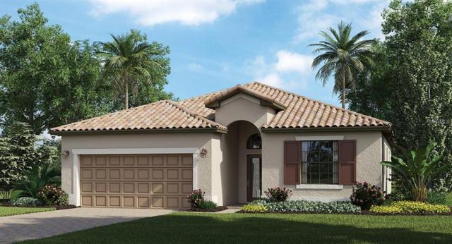 9865 Wingood Drive, Venice, FL 34292 (MLS #A4212737) :: The Duncan Duo Team