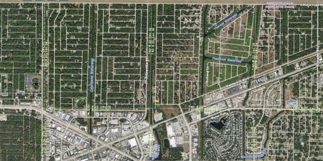 494 Ravenswood Boulevard, Port Charlotte, FL 33954 (MLS #A4212853) :: Premium Properties Real Estate Services