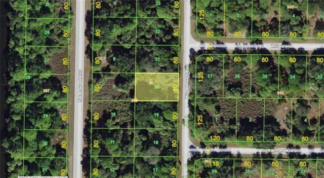 223 Musselman Street, Port Charlotte, FL 33954 (MLS #A4212905) :: Premium Properties Real Estate Services