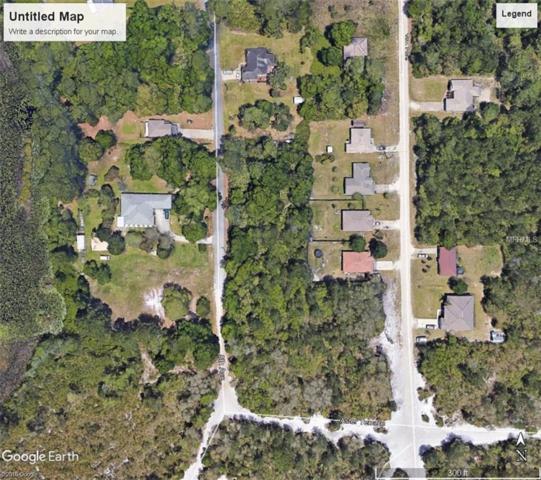 Park Lake Drive, Deland, FL 32724 (MLS #A4213158) :: Griffin Group