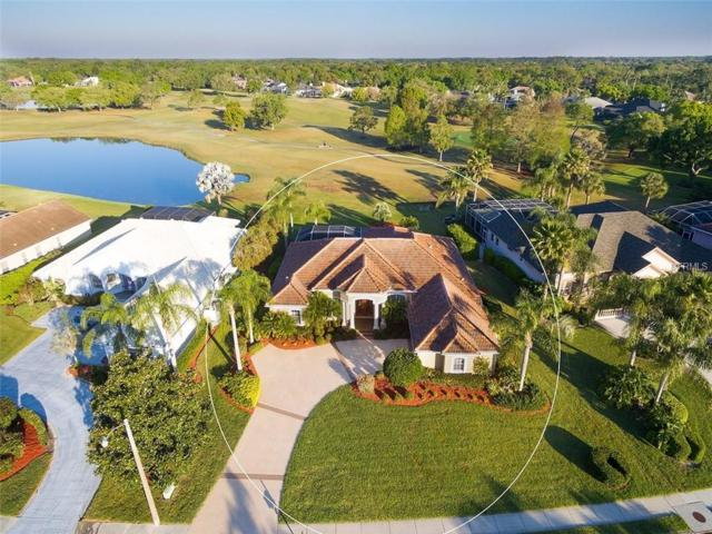 3521 Little Country Road, Parrish, FL 34219 (MLS #A4213479) :: Medway Realty