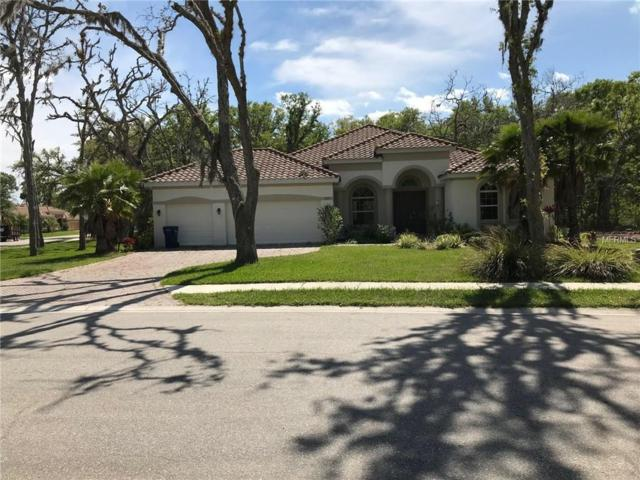 13127 56TH Court E, Parrish, FL 34219 (MLS #A4213764) :: Medway Realty