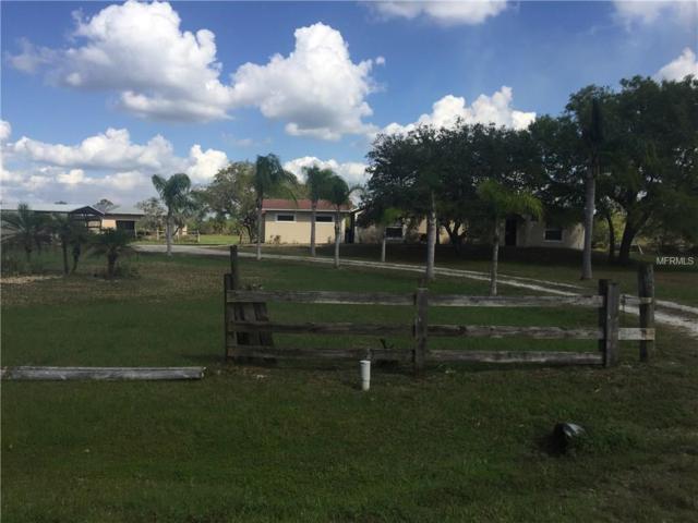 29147 Palm Shores Boulevard, Punta Gorda, FL 33982 (MLS #A4213780) :: Medway Realty