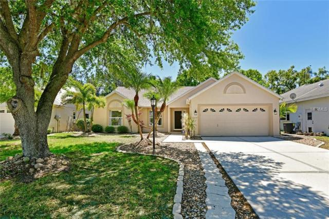 6674 Meandering Way, Lakewood Ranch, FL 34202 (MLS #A4213849) :: Medway Realty