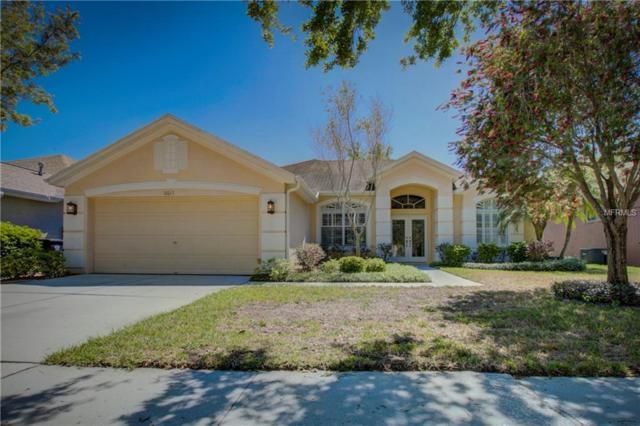 10013 Cannon Drive, Riverview, FL 33578 (MLS #A4214106) :: Premium Properties Real Estate Services