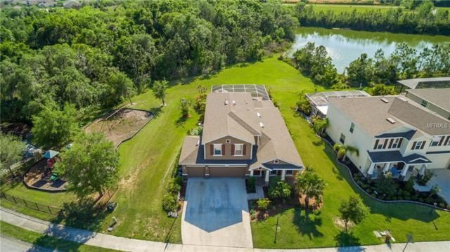 2709 130TH Avenue E, Parrish, FL 34219 (MLS #A4214578) :: Medway Realty