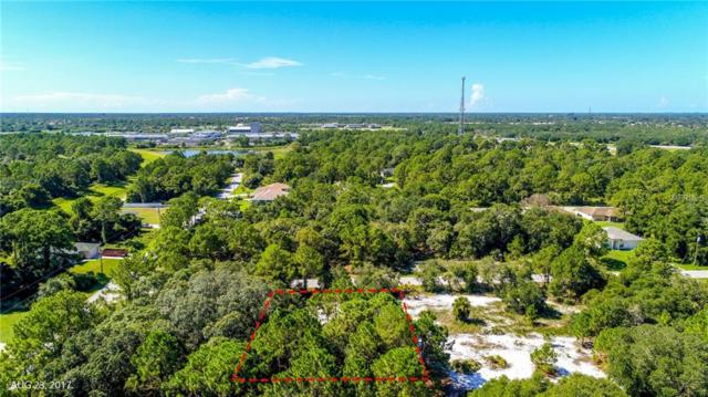 Fronda Avenue, North Port, FL 34291 (MLS #A4214877) :: Team Pepka