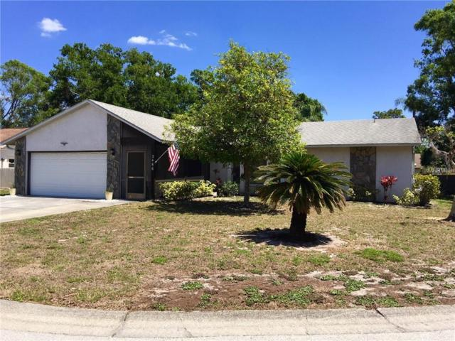 2466 Guthrie Circle, Sarasota, FL 34235 (MLS #A4215828) :: McConnell and Associates