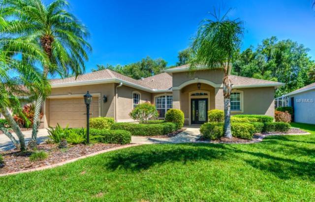 10477 Old Grove Circle, Bradenton, FL 34212 (MLS #A4215851) :: Team Pepka