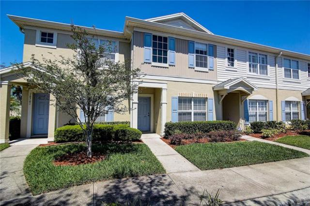 16303 Swan View Circle, Odessa, FL 33556 (MLS #A4400205) :: Team Bohannon Keller Williams, Tampa Properties