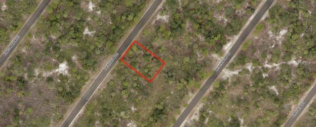 Delight Avenue, North Port, FL 34288 (MLS #A4400245) :: Team Pepka
