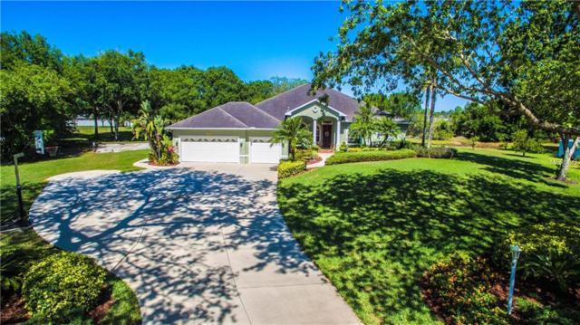 11007 8TH Avenue E, Bradenton, FL 34212 (MLS #A4400446) :: Medway Realty