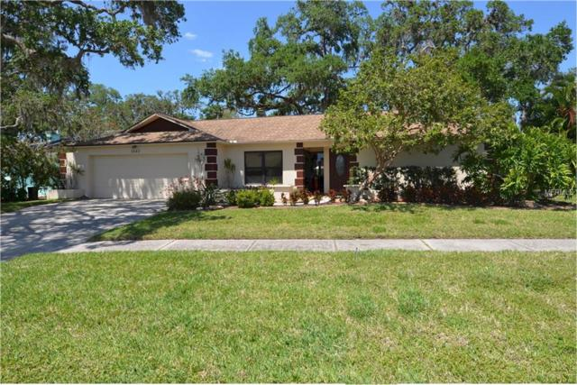 3683 Kingston Boulevard, Sarasota, FL 34238 (MLS #A4400559) :: Medway Realty