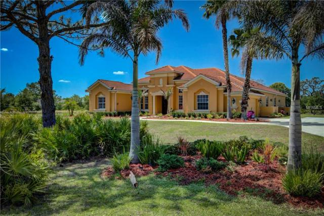 21705 Deer Pointe Crossing, Bradenton, FL 34202 (MLS #A4400599) :: The Duncan Duo Team