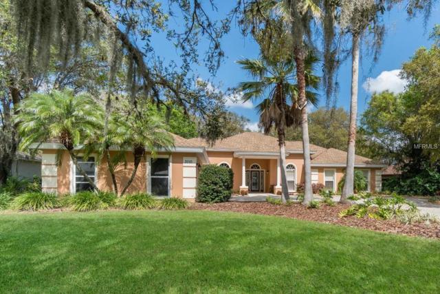 3010 Wilderness Boulevard E, Parrish, FL 34219 (MLS #A4400699) :: Team Pepka