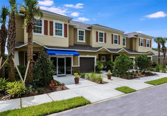 102 Cabernet Way 01-01, Oldsmar, FL 34677 (MLS #A4400724) :: The Duncan Duo Team