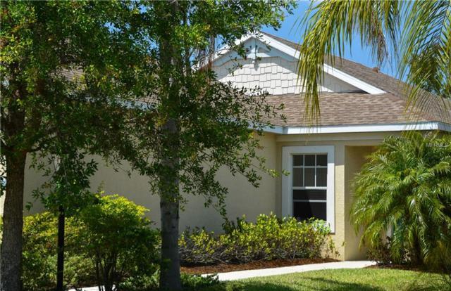 11808 Crawford Parrish Lane, Parrish, FL 34219 (MLS #A4400766) :: Team Pepka