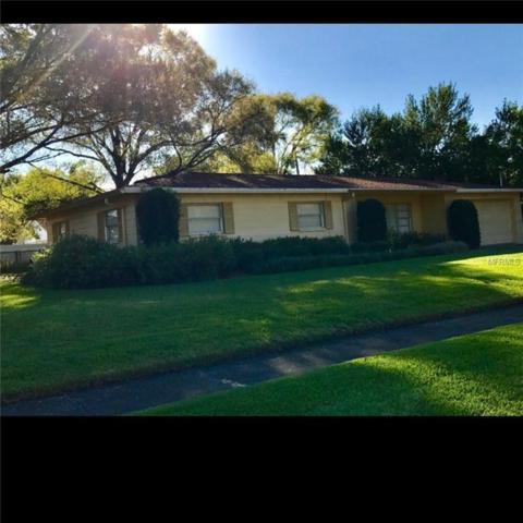 1228 Lorie Circle, Brandon, FL 33510 (MLS #A4400849) :: Dalton Wade Real Estate Group