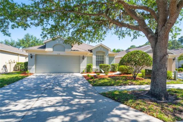5135 NW Gato Del Sol Circle, Wesley Chapel, FL 33544 (MLS #A4401051) :: Griffin Group
