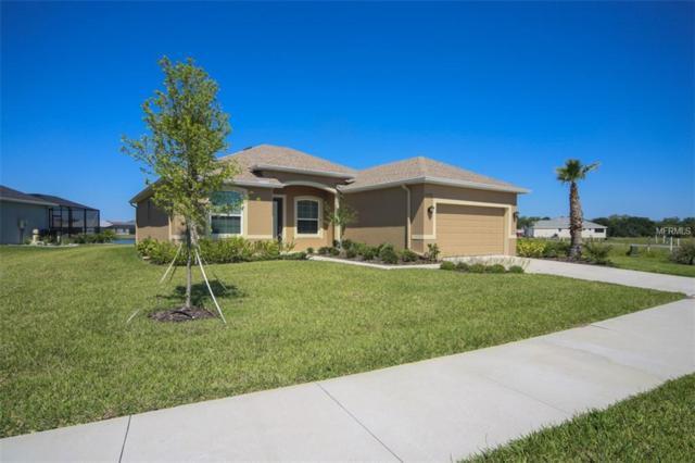 12310 Glenridge Lane, Parrish, FL 34219 (MLS #A4401161) :: TeamWorks WorldWide