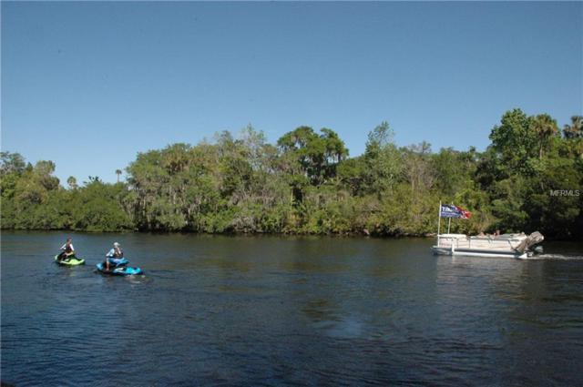 11230 Riverview Dr, Riverview, FL 33578 (MLS #A4401531) :: The Duncan Duo Team
