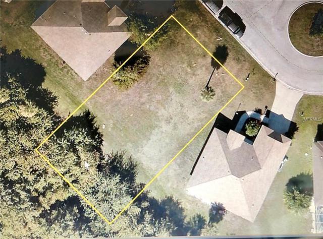 411 25TH Drive E, Ellenton, FL 34222 (MLS #A4401645) :: Homepride Realty Services