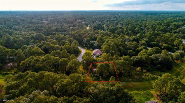 Gagstatter Road, North Port, FL 34291 (MLS #A4401810) :: The Duncan Duo Team