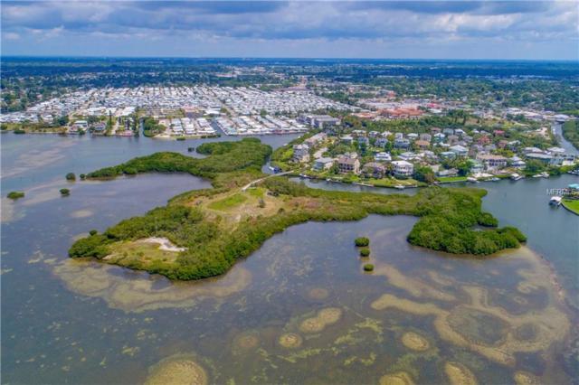 7038 Hawks Harbor Circle, Bradenton, FL 34207 (MLS #A4401905) :: The Duncan Duo Team