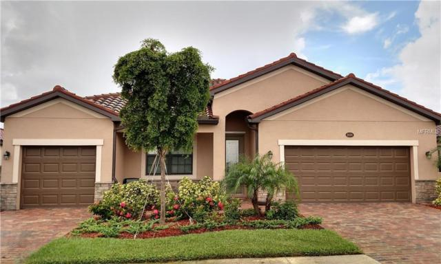 20290 N Granlago Drive, Venice, FL 34293 (MLS #A4402956) :: The Duncan Duo Team