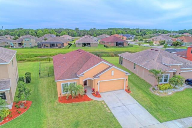 11213 78TH Lane E, Parrish, FL 34219 (MLS #A4403039) :: The Duncan Duo Team