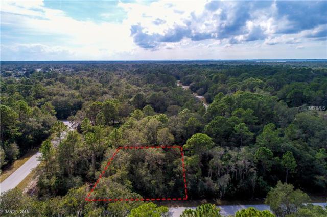 17161 Jamie Avenue, Port Charlotte, FL 33948 (MLS #A4403333) :: Premium Properties Real Estate Services