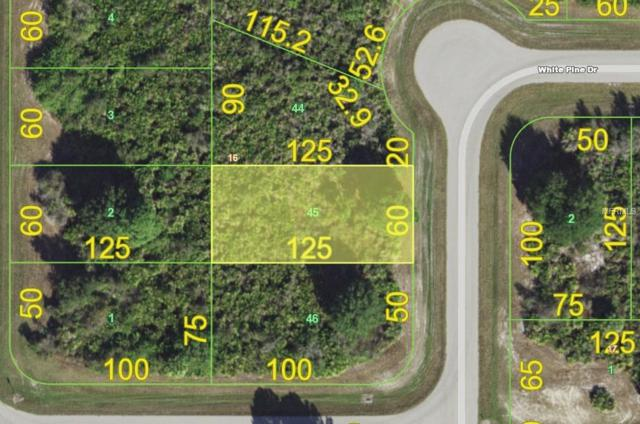 102 White Pine Drive, Rotonda West, FL 33947 (MLS #A4403421) :: The Duncan Duo Team